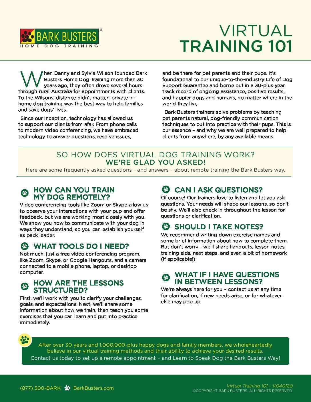Virtual Dog Training!